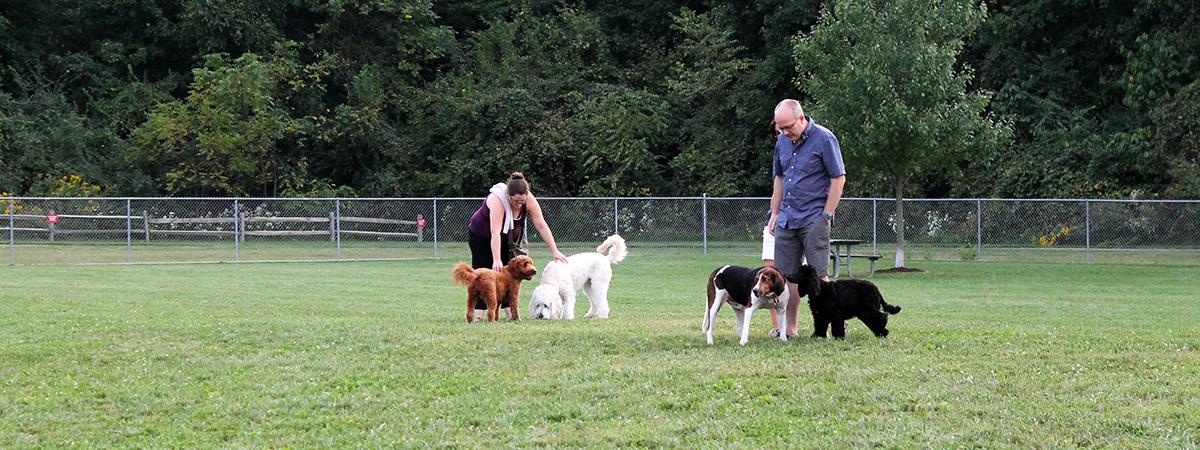 Dog Park at Oak Grove Park