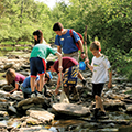 group of kids exploring a creek
