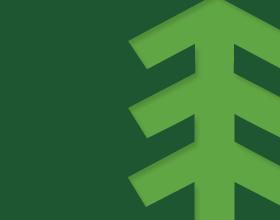 default image CWPD tree logo