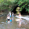 Creeking at Bill Yeck Park
