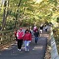walkers on Iron Horse Trail in the fall