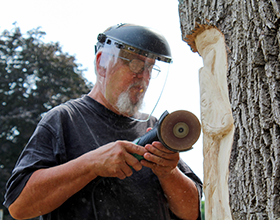 Loren Lorenzo carves a fox into a tree at Black Oak Park