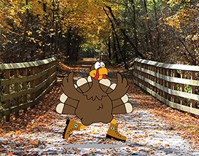 turkey on Iron Horse Trail
