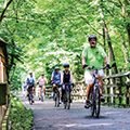 group of bikers riding on a path