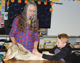 volunteer showing pelt to student