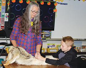 volunteer showing pelt to student