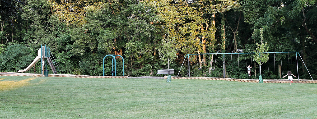 playground equipment at Black Oak Park