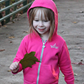 Preschool Nature Series: Fall Nature Collection