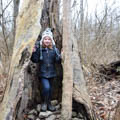 young girl standing in hollow tree