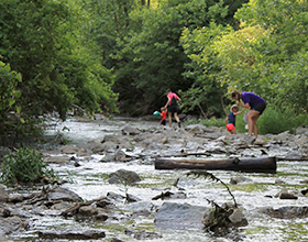 two adults and two children walking in Holes Creek at Grant Park