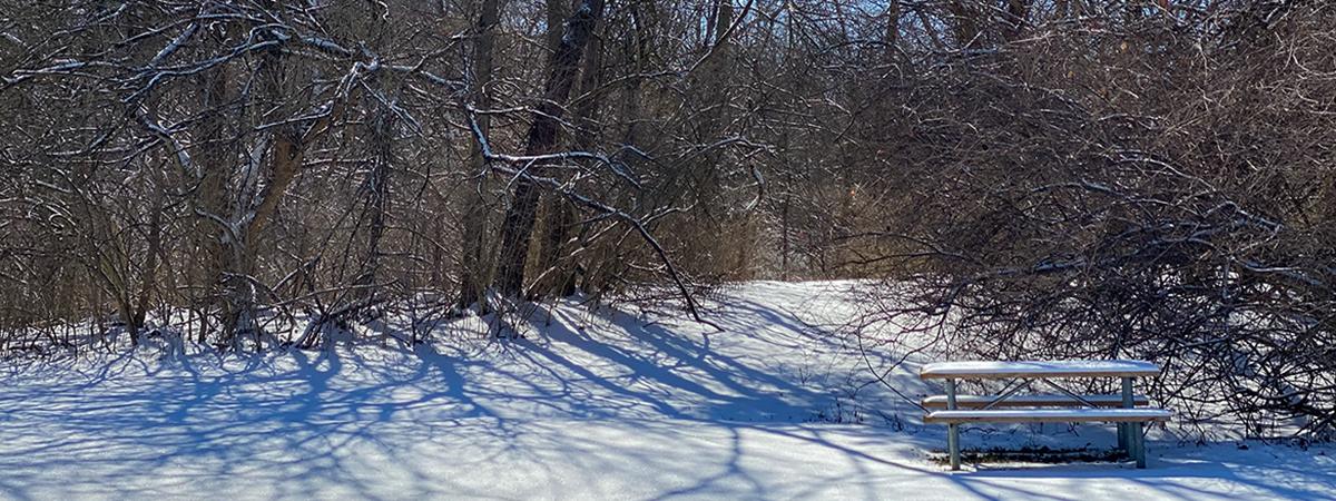 snowy picnic table at trailhead of Black Oak East Park